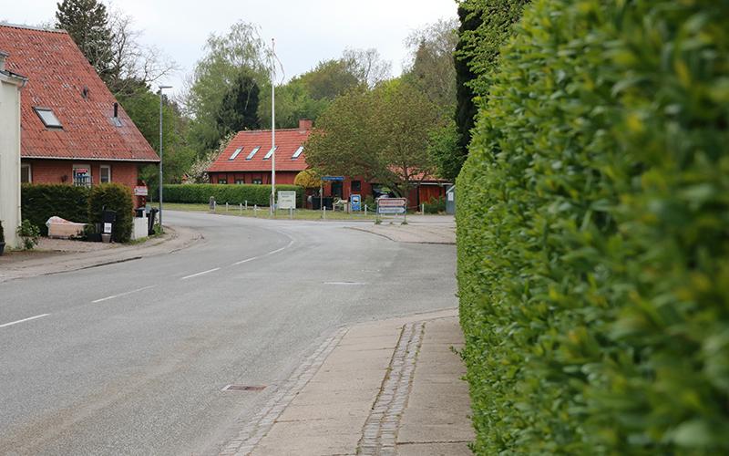 Holbækvej i Knabstrup bys centrum langs en hæk